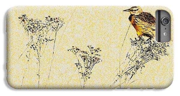 Meadowlark In Kansas Prairie 1 IPhone 6 Plus Case by Anna Louise
