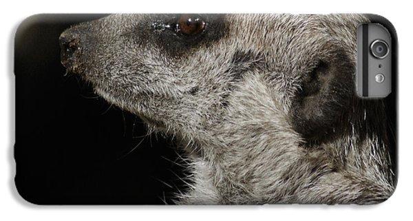 Meerkat Profile IPhone 6 Plus Case by Ernie Echols