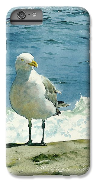 Montauk Gull IPhone 6 Plus Case by Tom Hedderich