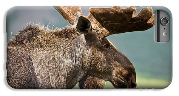 Moose Collection IPhone 6 Plus Case by Marvin Blaine