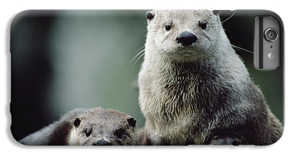 North American River Otter Lontra IPhone 6 Plus Case by Gerry Ellis
