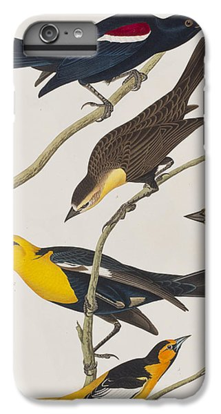Nuttall's Starling Yellow-headed Troopial Bullock's Oriole IPhone 6 Plus Case by John James Audubon