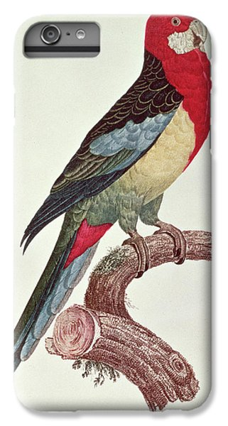 Omnicolored Parakeet IPhone 6 Plus Case by Jacques Barraband