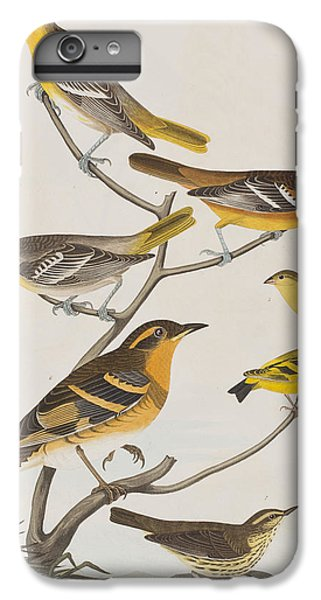 Orioles Thrushes And Goldfinches IPhone 6 Plus Case by John James Audubon