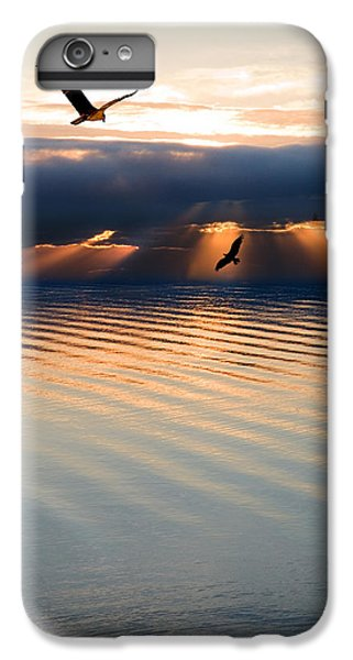 Ospreys IPhone 6 Plus Case by Mal Bray