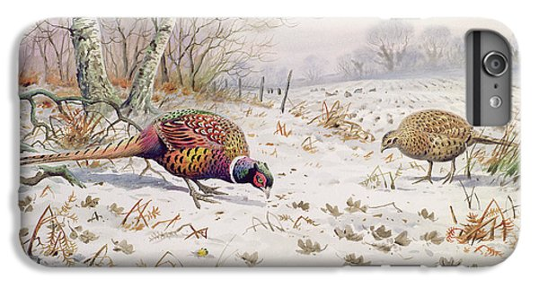 Pheasant And Partridge Eating  IPhone 6 Plus Case by Carl Donner