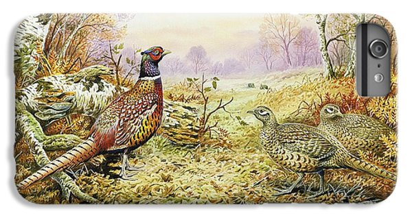 Pheasants In Woodland IPhone 6 Plus Case by Carl Donner