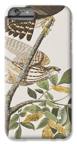 Pigeon Hawk IPhone 6 Plus Case by John James Audubon