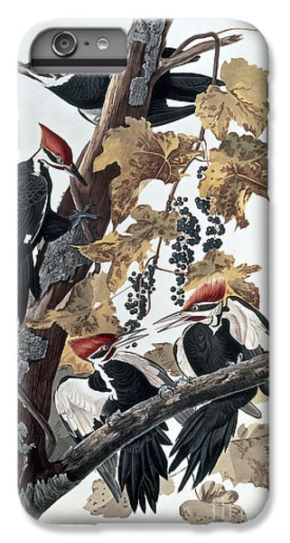 Pileated Woodpeckers IPhone 6 Plus Case by John James Audubon
