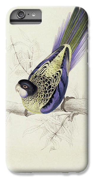 Platycercus Brownii, Or Browns Parakeet IPhone 6 Plus Case by Edward Lear
