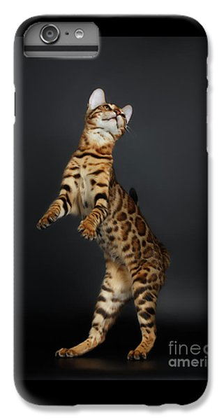 Playful Female Bengal Cat Stands On Rear Legs IPhone 6 Plus Case by Sergey Taran