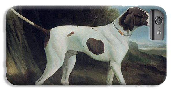 Portrait Of A Liver And White Pointer IPhone 6 Plus Case by George Garrard