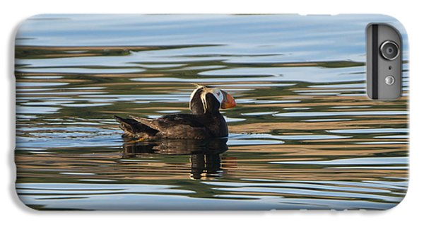 Puffin Reflected IPhone 6 Plus Case by Mike Dawson
