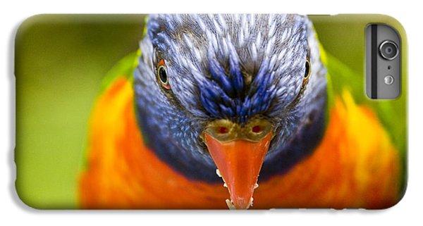 Rainbow Lorikeet IPhone 6 Plus Case by Avalon Fine Art Photography