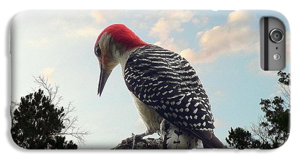 Red-bellied Woodpecker - Tree Top IPhone 6 Plus Case by Al Powell Photography USA