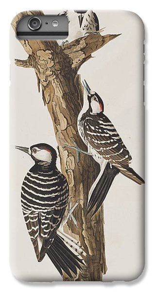 Red-cockaded Woodpecker IPhone 6 Plus Case by John James Audubon