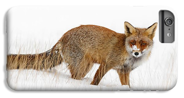 Red Fox In A Snow Covered Scene IPhone 6 Plus Case by Roeselien Raimond