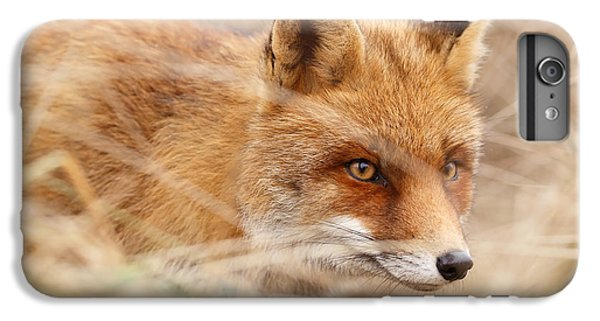 Red Fox On The Hunt IPhone 6 Plus Case by Roeselien Raimond
