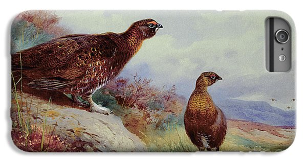 Red Grouse On The Moor, 1917 IPhone 6 Plus Case by Archibald Thorburn