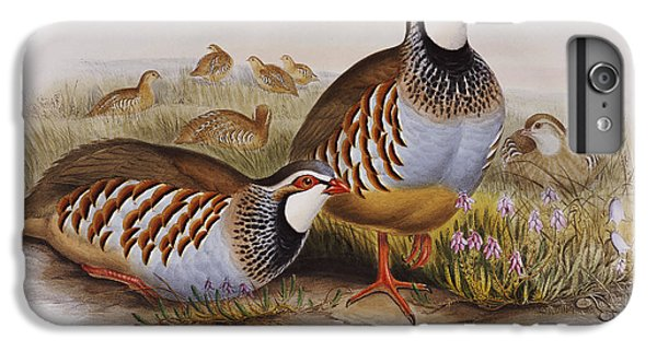 Red-legged Partridges IPhone 6 Plus Case by John Gould