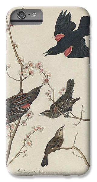 Red-winged Starling IPhone 6 Plus Case by John James Audubon