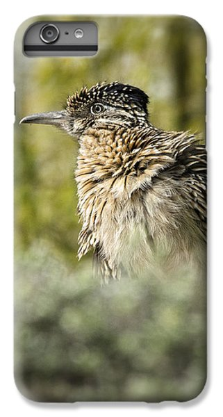 Roadrunner On Guard  IPhone 6 Plus Case by Saija  Lehtonen