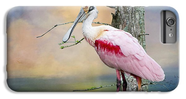 Roseate Spoonbill In Treetop IPhone 6 Plus Case by Bonnie Barry