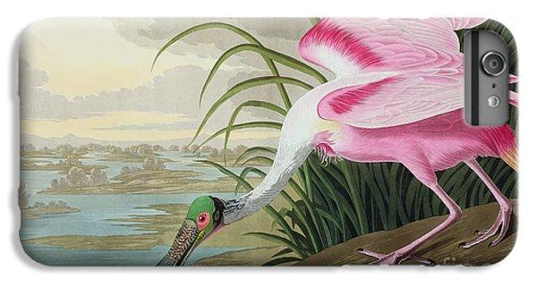 Roseate Spoonbill IPhone 6 Plus Case by John James Audubon