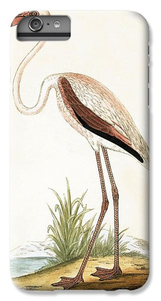 Rosy Flamingo IPhone 6 Plus Case by English School