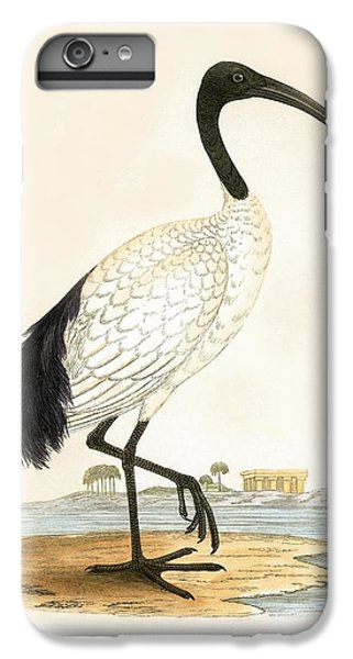 Sacred Ibis IPhone 6 Plus Case by English School