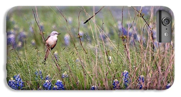 Scissor-tailed Flycatchers IPhone 6 Plus Case by Cathy Alba