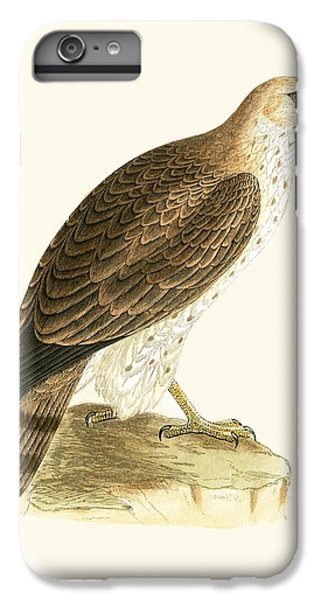 Short Toed Eagle IPhone 6 Plus Case by English School