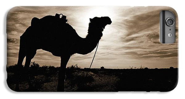 Silhouetted Camel, Sahara Desert, Douz IPhone 6 Plus Case by David DuChemin