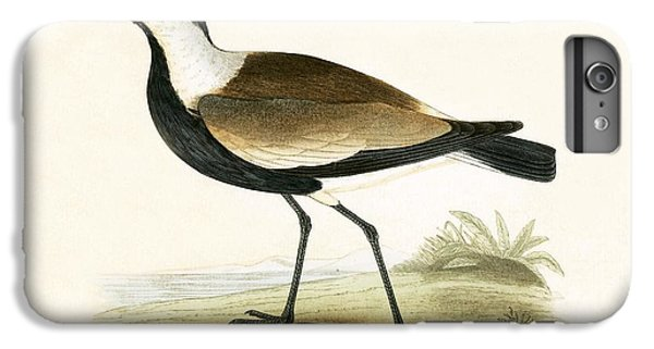 Spur Winged Plover IPhone 6 Plus Case by English School
