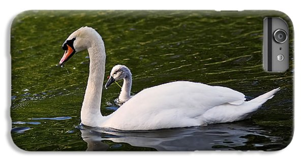 Swan Mother With Cygnet IPhone 6 Plus Case by Rona Black