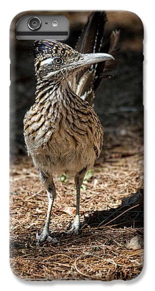 The Greater Roadrunner Walk  IPhone 6 Plus Case by Saija Lehtonen
