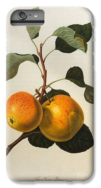 The Kerry Pippin IPhone 6 Plus Case by William Hooker