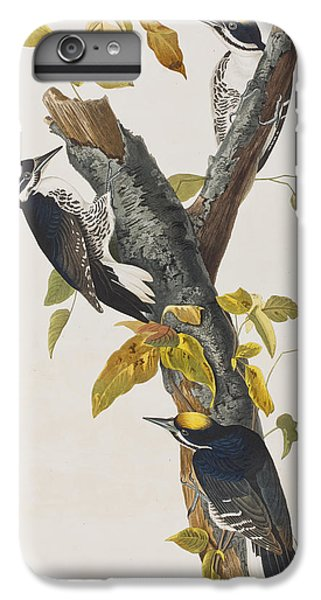 Three Toed Woodpecker IPhone 6 Plus Case by John James Audubon