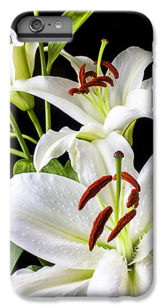 Three White Lilies IPhone 6 Plus Case by Garry Gay