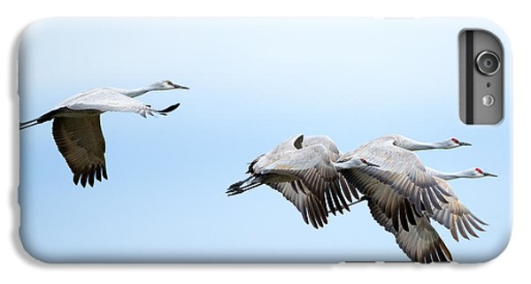 Tight Formation IPhone 6 Plus Case by Mike Dawson