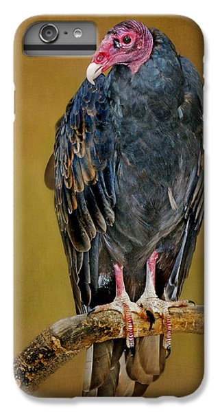 Turkey Vulture IPhone 6 Plus Case by Nikolyn McDonald