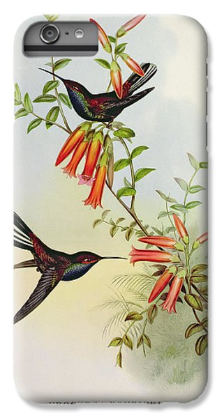 Urochroa Bougieri IPhone 6 Plus Case by John Gould