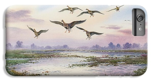 White-fronted Geese Alighting IPhone 6 Plus Case by Carl Donner