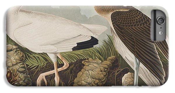 White Ibis IPhone 6 Plus Case by John James Audubon