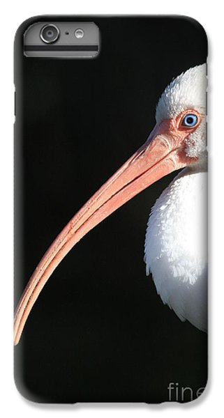 White Ibis Profile IPhone 6 Plus Case by Carol Groenen