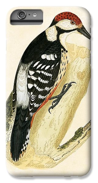 White Rumped Woodpecker IPhone 6 Plus Case by English School