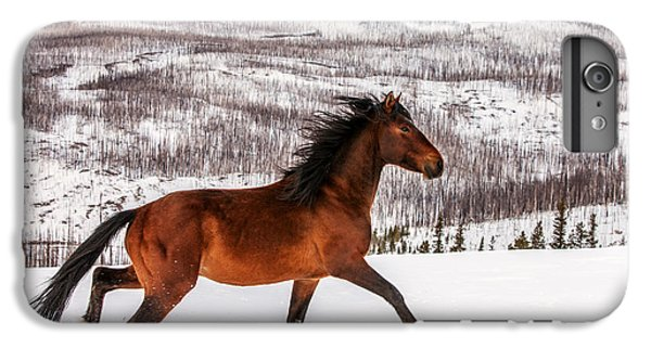 Wild Horse IPhone 6 Plus Case by Todd Klassy