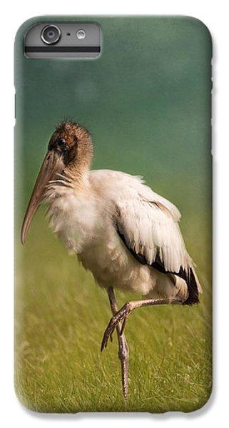 Wood Stork - Balancing IPhone 6 Plus Case by Kim Hojnacki