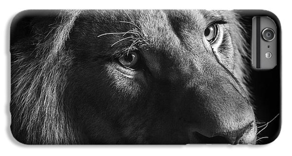 Young Lion In Black And White IPhone 6 Plus Case by Lukas Holas