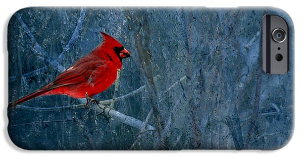 Northern Cardinal IPhone 6s Case by Thomas Young